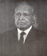 Professor Raman Viswanathan